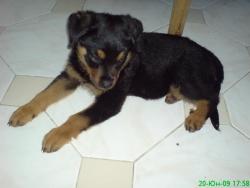 Първата снимка на Тара :)