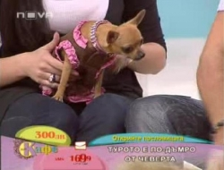 Nova tv :)