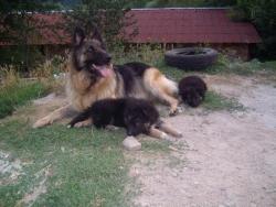 Inka & BB