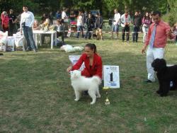 Нана - Best in Show Baby (19.09.09 Stara Zagora)