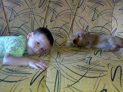 0015 бебе Арчи и Ивко.jpg