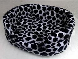 легло  бял  леопард