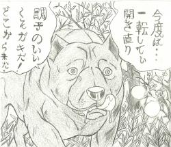 dog20008.jpg