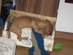 Бети на разкопки в леглото си :Д